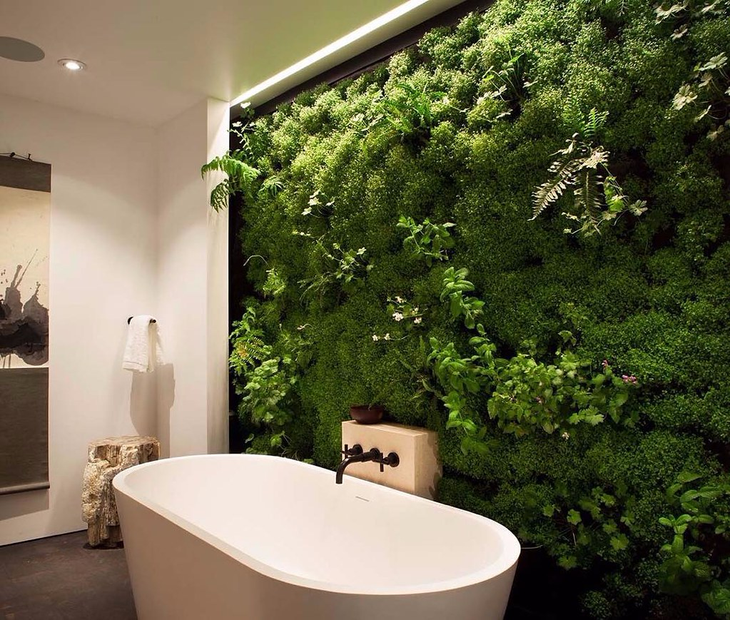 Plant bathroom